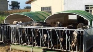 telu-nojume-horst-AGRIBOX12-1