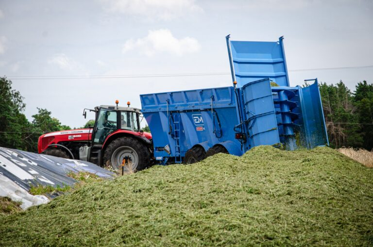 Meslu-izkliedetajs-kukuruzas-bedre